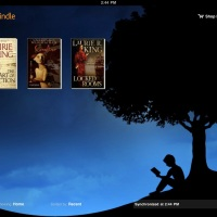 Kindle Reader - Power of kindle on iPhone and iPad